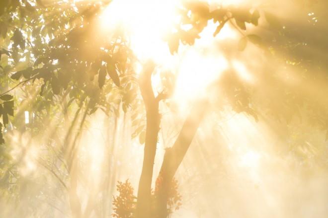日光浴による浄化
